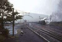 A pair of Black 5s, led by no 45359, held in the up loop at Abington on a wet and windy 30 July 1966 with a lengthy train of empty stock.  <br><br>[John Robin&nbsp;30/07/1966]