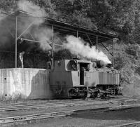 Czech built 0-6-0T No. 25-30 is manually coaled at Oskova Yard following the afternoon shift change on Sunday 28th September 2014 - operations here go on seven days a week such is the demand for coal from the power station at Tuzla.<br><br>[Bill Jamieson&nbsp;28/09/2014]