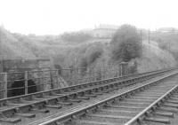 A view of the twin tunnels at Cartsburn in the summer of 1963, looking west from the GSWR overbridge carrying the route to Princes Pier. [See image 9558]<br><br>[John Robin&nbsp;13/08/1963]