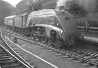 A4 60007 <I>Sir Nigel Gresley</I> with a train at Newcastle Central in 1963.<br><br>[K A Gray&nbsp;//1963]
