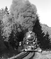 Metre gauge 2-10-2T 99 7241 blasts up the five mile long climb between Steinerne Renne and Drei Annen Hohne with the 09:25 Wernigerode - Brocken service in October 2006. The location is towards the end of a long stretch of 1 in 30 gradient which eases to 1 in 50 for the final half mile or so into Drei Annen Hohne.<br><br>[Bill Jamieson&nbsp;17/10/2006]