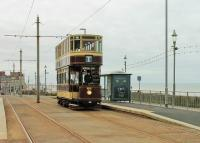 Bolton 66, a regular performer on Heritage services in Blackpool since 1981, climbs past the Cliffs Hotel stop between Gynn Square and the Cabin in May 2015. It ran in Bolton from 1901 to 1946, spent time in use as a summer house and then <I>chicken hut</I> but was purchased by the Bolton 66 Trust in 1963 and restored.<br><br>[Mark Bartlett&nbsp;24/05/2015]