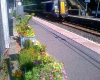 Colourful platform display at Lochwinnoch, photographed on 14 July 2015.<br><br>[John Yellowlees&nbsp;14/07/2015]