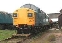 Smart looking preserved diesel locomotive 37097, photographed in November 2006 in the sidings of the Caledonian Railway Ltd at Bridge of Dun.<br><br>[John Furnevel&nbsp;07/11/2006]