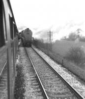 View from 'Scottish Rambler No 3' on 30 March 1964, on the leg from Dunfermline Lower to Denny via Alloa Swing Bridge. The special is about to pass A4 60031 <I>Golden Plover</I> with a Glasgow Buchanan Street - Aberdeen train just south of Alloa Junction.<br><br>[John Robin&nbsp;30/03/1964]