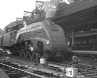 One of Gateshead shed's A4s, no 60018 <I>Sparrow Hawk</I>, has recently taken over a train at Newcastle Central on 23 June 1962. The Pacific will shortly head north with the summer Saturday 10.25am Scarborough - Glasgow Queen Street. <br><br>[K A Gray&nbsp;23/06/1962]
