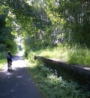 Light and shade. Looking South on the cycle path parallel to the Glasgow to Ayr line at Kilbarchan in July 2015. [See image 52151] <br><br>[Ken Strachan&nbsp;15/07/2015]