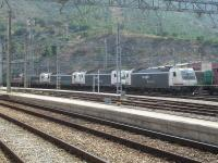A line of four Renfe Mercancías operated Bombardier Traxx 3KV DC Bo-Bo electric freight locos stand alongside Portbou station in August 2015, with dirty 253-082 and immaculate 253-095 the nearest pair. These locos were built to operate on the wider 1668mm gauge lines in Spain, unlike the Traxx locos of other operators which are all for standard 1435mm gauge operation. The interchange yard with SNCF is to right of view.<br><br>[David Pesterfield&nbsp;07/08/2015]