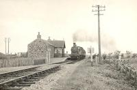 D1 4-4-0 62230 passing Philorth Halt on 12 July 1950 with a Fraserburgh - Aberdeen train.<br><br>[G H Robin collection by courtesy of the Mitchell Library, Glasgow&nbsp;12/07/1950]