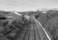 Looking west over what would become the site of the new Maryhill Station and reinstated Maryhill Park Junction for the line to Anniesland.  The unused (?) new signalbox is beyond the industrial unit to the left.<br><br>[Bill Roberton&nbsp;16/09/1988]