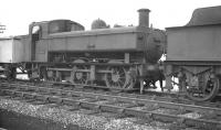 Hawksworth 0-6-0 pannier tank no 1668 in the sidings at Oswestry on 2 October 1961. Built at BR Swindon Works as recently as 1955 the locomotive would remain at Oswestry until eventual withdrawal in January 1965.<br><br>[K A Gray&nbsp;02/10/1961]
