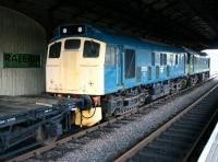 A pair of type 2s stabled in the trainshed at Boness on 24 January 2005. The locomotives are 25235 (nearest) and D7659. [See image 53534]<br><br>[John Furnevel&nbsp;24/01/2005]