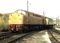 D319 and D1914 photographed at Crewe on a Sunday afternoon in the autumn of 1969.<br><br>[John Furnevel&nbsp;07/09/1969]