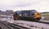 37187 at the west end of Swindon station on the 6th of October 1982 with part of the GWR Works in the background. The locomotive was later renumbered 37683 and ended its days with Direct Rail Services before being scrapped as late as 2013. <br><br>[Peter Todd&nbsp;06/10/1982]