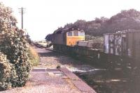 An unidentified class 25 taking the Cambrian Coast pick up freight north through Llwyngwril station in the summer 1978. [Ref query 2995]<br><br>[Mark Bartlett&nbsp;//1978]