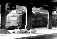 The uncompromisingly determined looking face of a Deltic shows up well in this cross platform view at Newcastle Central in 1972. Train 1S16 is the 0800 Kings Cross - Edinburgh Waverley and the locomotive is 9010 <I>King's Own Scottish Borderer</I>. Following a crew change the outgoing team is about to exit stage right.<br><br>[John Furnevel&nbsp;01/02/1972]