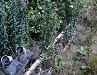 Felled lattice signal post in the weeds at Bathgate Upper in 1988. This was behind the westbound platform.<br><br>[Ewan Crawford&nbsp;//1988]