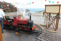 Beer Heights Light Railway 0-4-0ST (with tender) No.4 <I>Thomas II</I> is turned at the Much Natter terminus, on the hillside high above Beer Village, Devon, and the English Channel.<br><br>[Mark Bartlett&nbsp;01/08/2015]