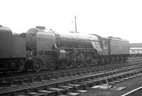 The shed yard at Kingmoor on 7 March 1964, with A2 Pacific no 60524 <I>Herringbone</I> centre stage.<br><br>[K A Gray&nbsp;07/03/1964]