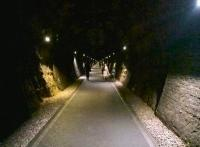 Heading North through Coombe Down tunnel on 5th March 2016. The lights are illuminated from 5am to 11pm daily.<br><br>[Ken Strachan 05/03/2016]