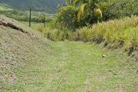 How's this for obscure? An abandoned section of the sugar cane railway in St. Kitts.<br><br>[Peter Todd&nbsp;14/04/2015]