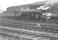 Scene in the shed yard at Gateshead in the early part of 1963 featuring A3 Pacific 60044 <I>Melton</I>. A pair of Deltics can just be made out in the left background.<br><br>[K A Gray&nbsp;//1963]
