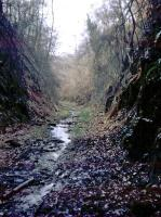 This is taken through the northern portal of Mierystock (aka Mireystock) tunnel [see image 26107].<br> The cutting was later filled in with spoil but then dug out again by a local group in about 2006 - the group is still awaiting funds from the local council to move the cycle track from a crossing of the A4136 into the tunnel.<br><br>[John Thorn&nbsp;/04/1968]