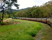 Kuranda Scenic Railway (QR). The 15.30 Kuranda to Cairns gingerly descends from the tableland to sea level, round this long curve, built for the steam locos to gain altitude.<br><br>[Colin Miller&nbsp;27/09/2015]