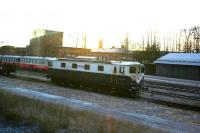 Taken at half past noon with slightly more than an hour left till sunset, ASEA (the A in ABB) built Ma-class loco 827 of Netrail (a loco-hiring agency) and two Inlandsbanan Y1 railbusses [see image 54977] sit in the loco sidings at Östersund in November 2013.<br><br>[Charlie Niven&nbsp;22/11/2013]