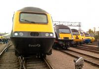 The HST Celebrated its 40th birthday with an open day at St Philips Marsh depot, Bristol, on Bank Holiday Monday. Here are six different liveries (FGW, Grand Central, Network Rail, Virgin, EMT, and GWR), with the prototype power car just visible in the left background. [See recent news item]<br><br>[Ken Strachan 02/05/2016]