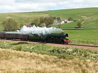 Flying Scotsman steaming sedately south between Heriot and Fountainhall on 15 May 2016.<br><br>[Mark Poustie&nbsp;15/05/2016]