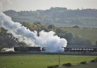 60103 propelling empty stock to Manuel on 15 May.<br><br>[Bill Roberton&nbsp;15/05/2016]