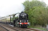 'Tornado' with a special on the GWR Berks and Hants line, just to the west of Great Bedwyn Station, on 11 May 2016.<br><br> <br><br> The train is heading west to Westbury and then on to Bath and Bristol.<br><br>[Peter Todd 11/05/2016]