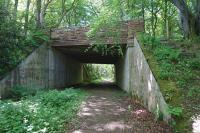 Morriston Overbridge south of Culzean, constructed in the same manner as Alloway Tunnel. View looks south.<br><br>[Colin Miller&nbsp;02/06/2016]