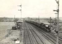 A Kilmarnock - Ardrossan train approaching Crosshouse station on 6 May 1953 behind 2P 4-4-0 40644. <br><br>[G H Robin collection by courtesy of the Mitchell Library, Glasgow&nbsp;06/05/1953]