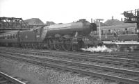 Gresley A3 Pacific 60077 <I>The White Knight</I>, smartly turned out by Copley Hill shed, stands at Doncaster on 28 July 1961 at the head of a Leeds Central - Kings Cross train.<br><br>[K A Gray&nbsp;28/07/1961]