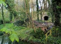 Another view of the tunnel see image [[55276]] and its verdant surroundings. Local knowledge was very useful in finding this viewpoint!<br><br>[Ken Strachan 30/04/2016]