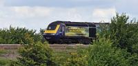 A visit to the lineside on the Great Western Main Line near the village of Fernham, to the east of Swindon, finds 43144 on a westbound HST 125, displaying the logo 'Building a Greater West'.<br><br>[Peter Todd&nbsp;14/07/2016]