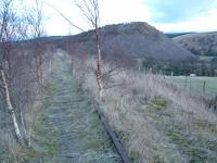 The closed, but retained, line west of Pennyvenie Colliery in 2004. Not surprisingly there's been some tree growth on the trackbed.<br><br>[Ewan Crawford&nbsp;22/02/2004]