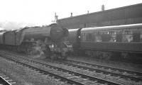 Non-stop through Doncaster on 11 April 1963, the 12.25pm Kings Cross - Newcastle Central passes a stopping train waiting at the down platform. The locomotive is A3 Pacific 60061 <I>Pretty Polly</I>. <br><br>[K A Gray&nbsp;11/04/1963]