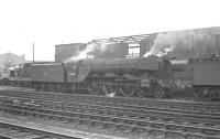 Gresley A3 Pacific 60084 <I>Trigo</I> appears to be surrounded by Deltics in the shed yard at Gateshead in early 1963.<br><br>[K A Gray&nbsp;//1963]
