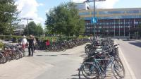 The south side of the station concourse is also full of bicycles. Whereas the Utrecht 12,500 space bicycle park is to be underground, in Uppsala the car park is underground and the bike park is green and seen all year round [see image 56273]. The integrated bus station is also visible behind the trees; a yellow bus is just visible to the right of the trees in the centreground.