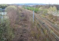 Coming together. View south approximately half way between Dalmarnock station and the River Clyde on 1 April 2007. To the left is the trackbed of the high level Switchback, while on the right the Glasgow Central Railway has almost completed its climb up from Dalmarnock station. The two routes came together at Strathclyde Junction just south of here, before crossing the River to reach Rutherglen.  <br><br>[John Furnevel&nbsp;01/04/2007]