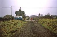 A melancholic air of damp and dereliction at Attlebridge on 23rd January 1977, shortly after the lifting of the track between Drayton and Lenwade. The view is north towards Lenwade.   <br><br>[Mark Dufton&nbsp;23/01/1977]