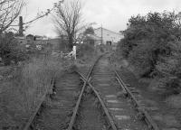 The Auchmuty branch in 1992 after the end of traffic.  The Balbirnie Mills siding diverges to the left with the line to Tullis Russell veering right. Access with permission.<br><br>[Bill Roberton&nbsp;//1992]