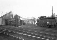 Shed scene at 65H Helensburgh in October 1957, with Parkhead V3 67613 and Eastfield J37 64610 amongst the locomotives in the yard.<br><br>[G H Robin collection by courtesy of the Mitchell Library, Glasgow&nbsp;26/10/1957]