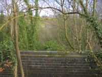 View south east over the safety parapet built across the solum at the remaining abutment of the Calderpark viaduct. The photograph looks over the North Calder Water, along the line taken by the viaduct and towards Maryville station. Hidden in the trees but just discernible in the gap, slightly left of centre, are the stables since built on the alignment of the railway.<br><br>[Colin McDonald&nbsp;20/02/2017]