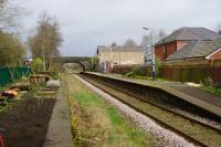 The view north at Croston on 19 March 2017 shortly after the trees at the back of the platform on the right had been felled. On this side of the track work continues clearing the disused platform and nearest the camera the start of a vegetable patch.<br><br>[John McIntyre&nbsp;19/03/2017]