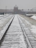 The main gate, the 'Gate of Death', viewed from within Auschwitz II (Birkenau).<br><br> The view is to the east, the line continued out of the site to join the railway network.<br> The nearby town of Oświęcim is a major railway junction.<br><br>[Alastair McLellan&nbsp;07/02/2017]