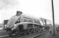 4498 <I>Sir Nigel Gresley</I> at Kingmoor on 1 April 1967, on the occasion of its first outing in preservation. The A4 had arrived with a 12 coach special off the WCML from Crewe, returning via the S&C and Blackburn. [See image 4583] <br><br>[Bruce McCartney&nbsp;01/04/1967]